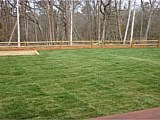 Sod & Seed Installations